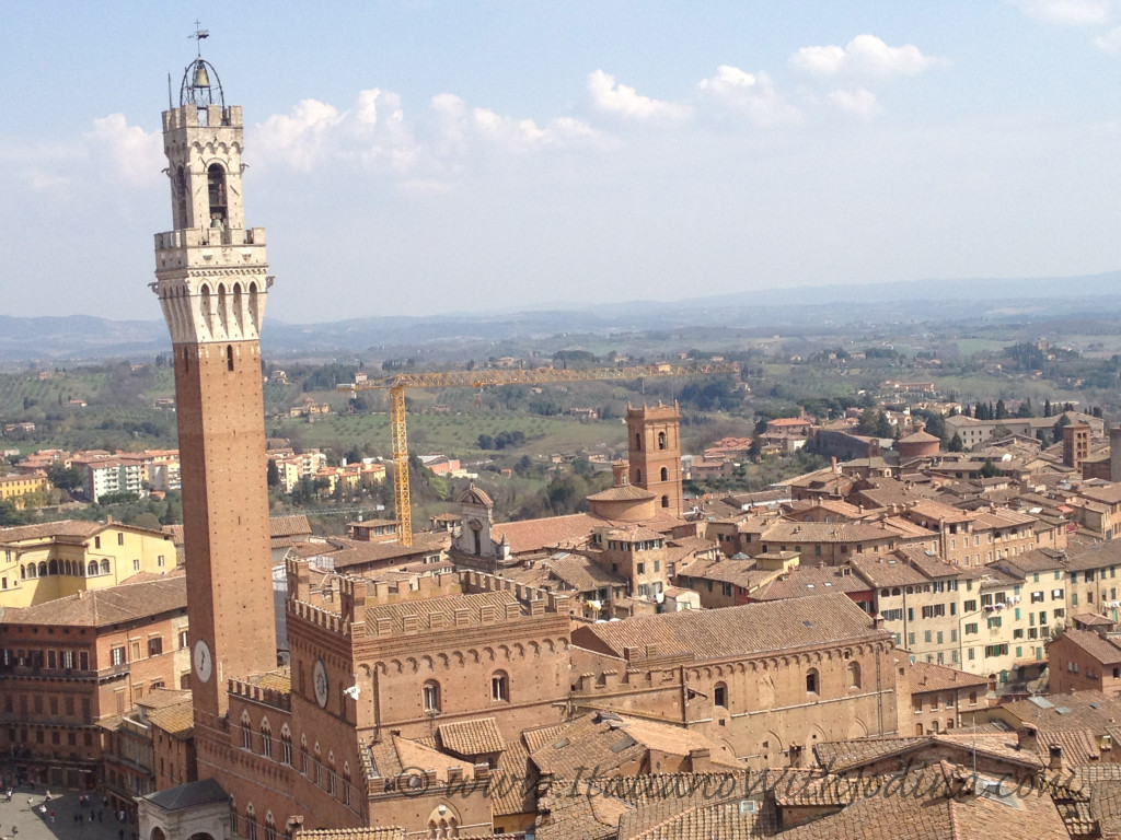 view from on high of torrei del mangia, siena, italy