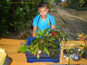 a young man moves plants out of rain for safekeeping