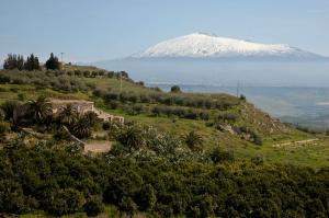 Sicily31