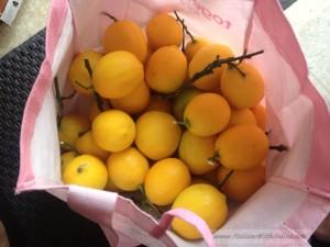 10-100-1000 limoni